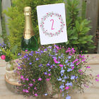 Floral Wreath PLUM Wedding Table Numbers A6 - (numbers 1-10)