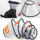 New Dog Elizabethan Wound Medical Healing Cone Protection Smart Pet Collar