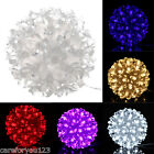 50 LED Petals Round Ball String Fairy Light for Wedding Party Outdoor Waterproof