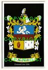MCEVOY Family Coat of Arms Crest - Choice of Mount or Framed