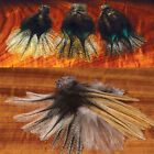 Hareline Coq de Leon Feathers Fly Tying Materials Assorted Colors