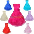 Girls Kid Flower Princess Embroidered Formal Party Prom Dress Bridesmaid Wedding