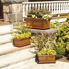Marchioro Tikal Plastic Planter Box with Saucer