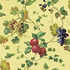 Kitchen and Bath 33&#039; x 20.5&quot; Fruit and Ivy Smooth Border Wallpaper <br/> Direct from Wayfair