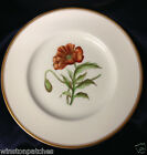 """ROYAL WORCESTER WILLIAMSON FLOWER LUNCHEON PLATE 9 1/4"""" RED POPPY GOLD TRIM"""
