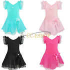 Girls Kids Fancy Ballet Dance Dress Leotard Skirt Party Dancewear Costume 2-12Y