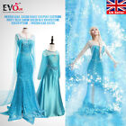 Party Blue Girls Adult  Elsa Dress Fancy Cosplay Costume Snow Queen wig Frozen