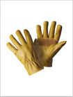 Dickies Unlined Leather Gloves GL0300 Tan Work Wear Glove