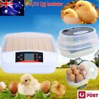 7/12/56 Egg Incubator Fully Automatic Digital LED Turner Poultry Chicken Duck AU