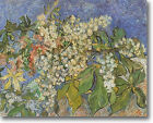 HUGE Van Gogh Blooming Chestnut Branches Stretched Canvas Giclee Repro ALL SIZES