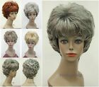 5 colors Short Curly Women Ladies Daily Hair Fluffy wig Hivision #1870