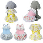 New Dog Cat  Dresses  Puppy Lace Skirts Pet Puppy Dog Costume Apparel Clothing