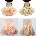 New Clothing For Dogs Pet Puppy Dog Clothes Lace Bow Wedding Dog Dress XS-XL