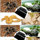 Pet Reptile Heat Mat  5/7/14/20W 110V Brooder Incubator Heating Pad US Plug