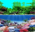 "19"" Double Sided Aquarium Background Backdrop Fish Tank Reptile Vivarium Marine"