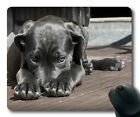Gaming mouse pad mouse mat Pet Dog Puppy The Shy Cute Animal Cane Corso
