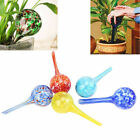 Automatic Self Plant Globe Bulb Watering Device Water Drip Indoor Houseplant New