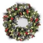 Holiday 50 Lights Red Berries Silver Bristle Christmas Decoretions outdoor 24 In