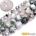 """Natural Green Tree Moss Agate Gemstone Round Loose Beads For Jewelry Making 15"""""""