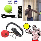 Bouncy Ball Fight Boxing Equipment W/ Head Band For Boxing Reflex Speed Training