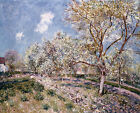 "ALFRED SISLY ""Springtime At Veneux"" CANVAS OR PAPER various SIZES available"