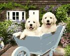 Two Lovely Dogs in Wheelchair HP Design Needlepoint Canvas #397