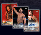 what is evidence based practice in nursing - 2018 Topps WWE Base,Bronze,Hall Of Fame,HBK & Evolution Pick What You Need