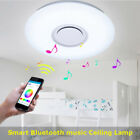 Bluetooth LED Music Smart Ceiling Light Colorful Lighting Remote Lamp 24W/36W