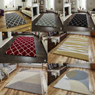 Elements rugs made in India 100% Hand Tufted wool pile contemporary thick Rugs