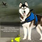 TAILUP Chest Strap Saddle Type Traction Rope Vest Harness Net Cloth Dog Strap#G