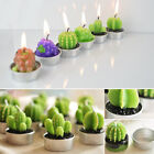 Mini Candles Cactus Grape Plant Scented Candle Home Party Table Creative Decor