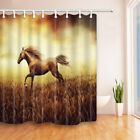 Shower Curtain Horse in field waterprooof Fabric Bathroom Decorations 69x71inch