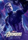 Marvel Avengers End Game Movie Poster All 16 Hero's On Canvas Or Photo Paper