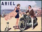 9053Decoration PosterHome wallRoom interior designDecorAriel MotorcycleDog