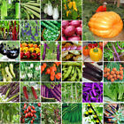 Used, Rare Variety Giant Vegetable Flower Fruit Seeds Home Garden Bonsai Plant Decor for sale  Shipping to Canada