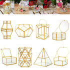 Geometric Jewelry Box Clear Glass Display Container Table Organizer Planter Pot
