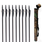 "Huntingdoor 12pcs 31.5"" Carbon Arrows SP500-550 Archery Hunting Target Shooting"