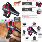 Personalized Dog Harness No Pull Reflective Adjustable CustomIDPatch (SEE VIDEO)