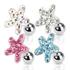 Surgical Steel Tragus / Cartilage / Helix Bar with Multi Paved Starfish Top