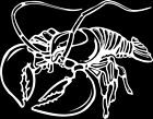 Lobster Window Wall Vinyl Decal Sticker Printed Mascot Graphic