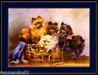 English Print Basket Pomeranian Dog Puppies Dogs Art Picture Poster