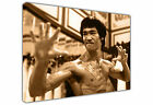 SEPIA BRUCE LEE LARGE CANVAS WALL ART / PHOTO / ART / PICTURE / PRINT