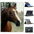 Close Up Of Horse Folio Wallet Leather Case For iPad 2, 3 & 4