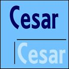 Cesar Wall Quote! 44x100cm Interior Home Transfer, Removable Boys Room Sticker