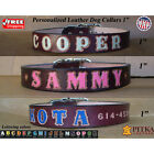 Custom Made Dog Collars - Mahogany Leather Dog Collar - Large Collars for Dogs