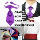 man Bow tie cravat hanky cummerband SAME material as our bridsmaid dress