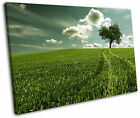 Green Countryside Landscape Tree Framed Canvas Wall Art Picture Print