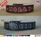 Leather Dog Collars for XL Dogs - Comfortable Custom Dog Collars - Collars USA