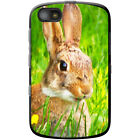 Bunny Rabbits Hard Case For Blackberry Models