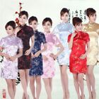 New Chinese Vintage Classic Silk Plum Blossom Summer Cheongsam Evening Dress